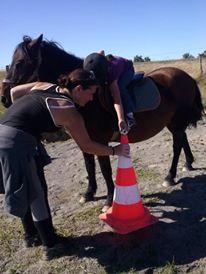 Jeux à poneys