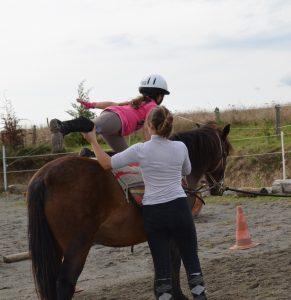 Les poneys de Marie