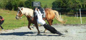 spectacle équestre - Les poneys de Marie
